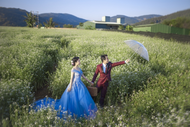wedding-2995654_1920
